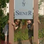 SieneR